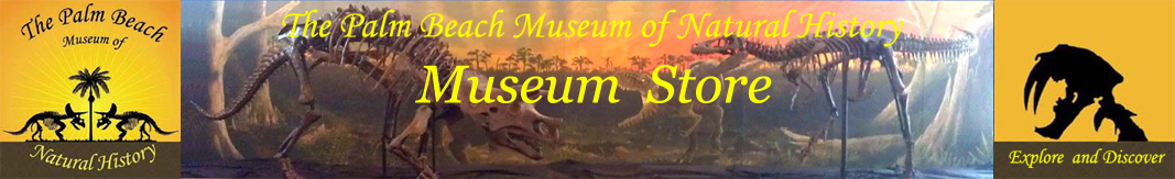 The Palm Beach Museum of Natural History