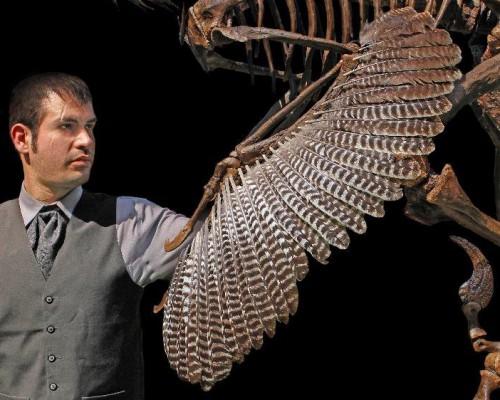 dakotaraptor-wing-crop