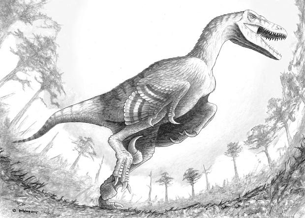 Dakotaraptor dinosaur