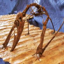 pterosaur-on-trackway