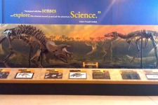 Expedition Dinosaur