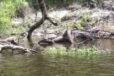 peace-river-may2013-039