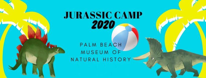 Jurassic Summer Camp Dinosaur